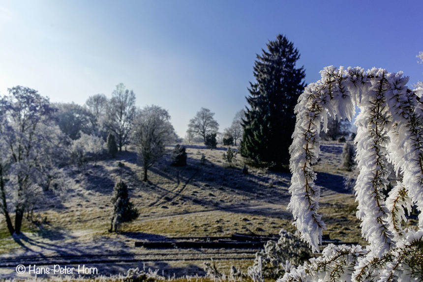 Winter in der Ameisenstadt